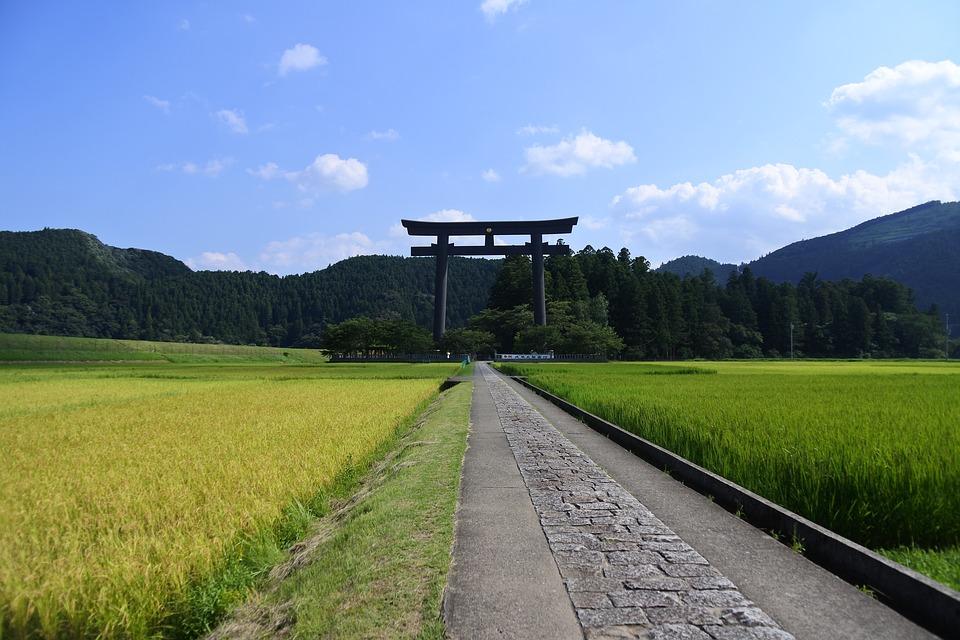 japan 2653775 960 720 - 和歌山で訪れるならココ!